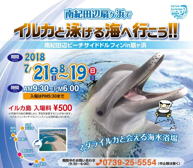 イルカと泳げる海へ行こう!※2018年ビーチサイドドルフィンは終了致しました※